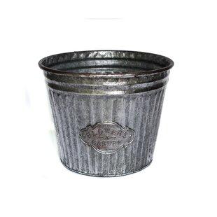 Tall galvanized flower buckets wayfair galvanized flower metalwire bucket mightylinksfo