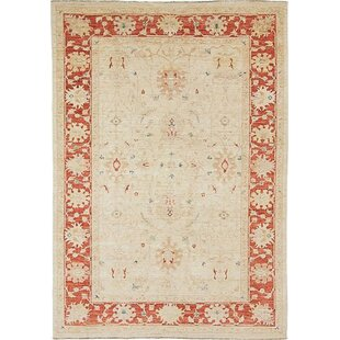 Fairlawn Hand Knotted Wool Beige Rug by Rosalind Wheeler