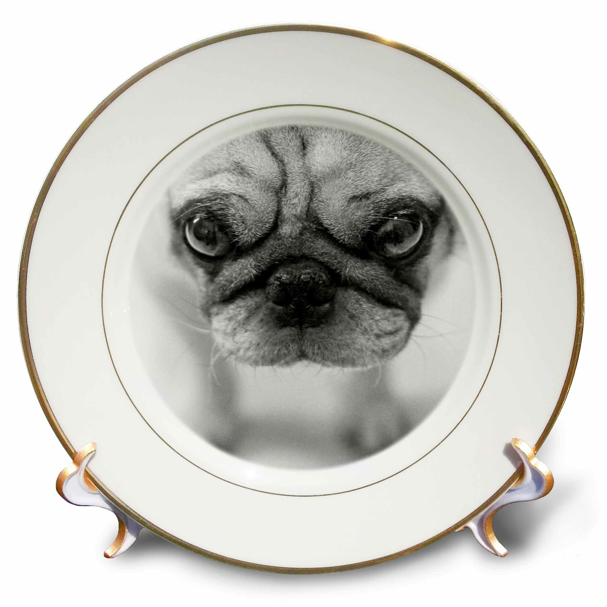 East Urban Home Pug Porcelain Decorative Plate Wayfair