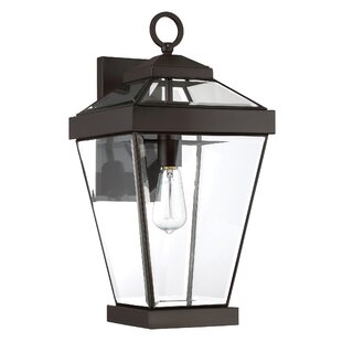 Lauren 1-Light Metal Outdoor Wall Lantern