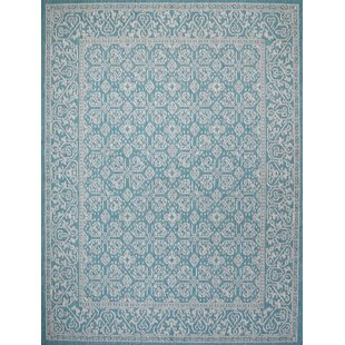 Satterlee Turquoise Indoor/Outdoor Area Rug