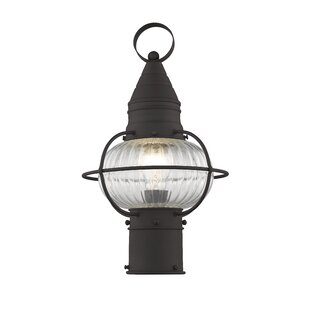 Find for Wildwood Outdoor 1-Light Lantern Head By Breakwater Bay