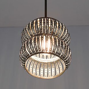 WPT Design Secola 1-Light Novelty Pendant