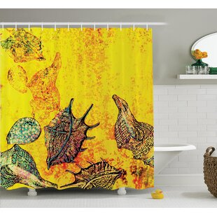 Stylized Seashells Single Shower Curtain by East Urban Home Fresh