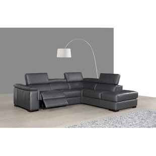 Shop Catawissa Leather Reclining Sectional by Wade Logan
