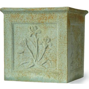 Coventry Fibreglass Planter Box By Bloomsbury Market