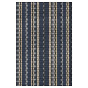 Hand Woven Navy Indoor/Outdoor Area Rug