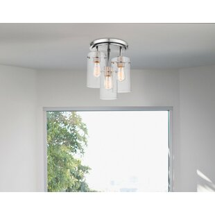 Edelson 3-Light Semi-Flush Mount by Brayden Studio