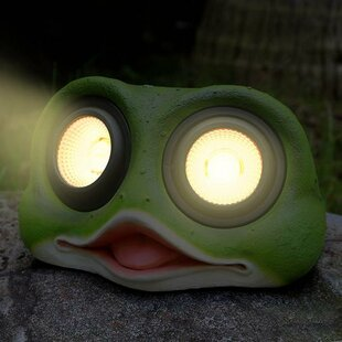 Myfuncorp Frog Solar Color Changing Spot Light