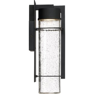 Orren Ellis Bracy LED Outdoor Sconce