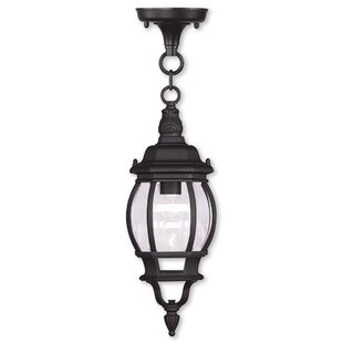 Shop For Kelly 1-Light Outdoor Hanging Lantern By Darby Home Co