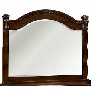 Astoria Grand Beachampton Transitional Accent Mirror
