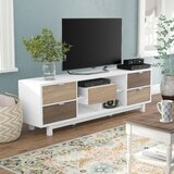 Avada TV Stand for TVs up to 78 inches byHokku Designs