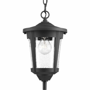 Online Reviews Duke 1-Light Oudoor Hanging Lantern By Alcott Hill