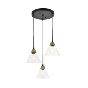 Hudson Oaks 3-Light Cluster Pendant by Gracie Oaks