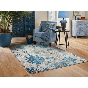 Kirts Gray Indoor/Outdoor Area Rug