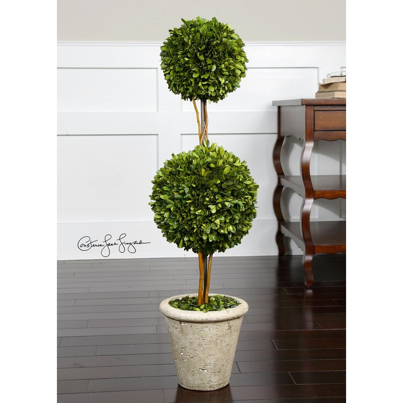 One Allium Way Preserved Boxwood 2 Sphere Topiary In Planter Reviews Wayfair