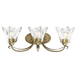 Where buy  Whaley 3-Light Vanity Light By Fleur De Lis Living