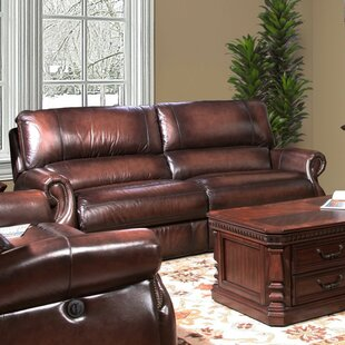 Darby Home Co Hardcastle Hardcastle Leather Power Reclining Loveseat