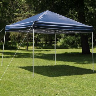 Alvina 12Ft.Wx12Ft.D Steel Pop-Up Canopy by Freeport Park