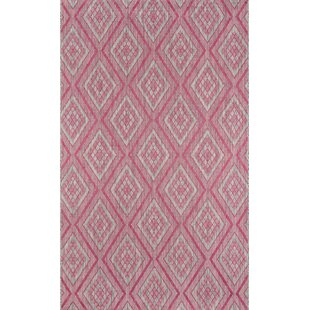 Madcap Cottage by Momeni Lake Palace Rajastan Weekend Pink Indoor/Outdoor Area Rug 2' X 3