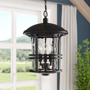 Darby Home Co Concetta 3-Light Outdoor Pendant