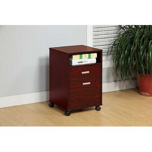 Eubank 2-Drawer Mobile Vertical Filing Cabinet