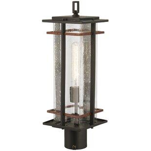 Loon Peak Plaisance Outdoors 1-Light Lantern Head