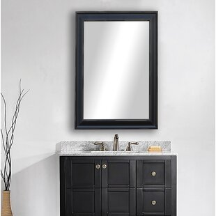 Shop For Michaels Scratches Bathroom/Vanity Mirror By Ebern Designs