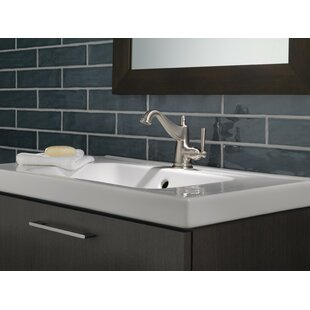 Delta Mylan Single Hole Bathroom Faucet with Drain Assembly and Spot Shield Technology