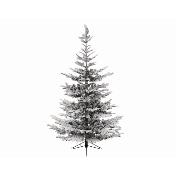 northlight 5 snowy everland layered superior flocked nobilis fir artificial christmas tree with unlit reviews wayfair - Artificial Christmas Trees