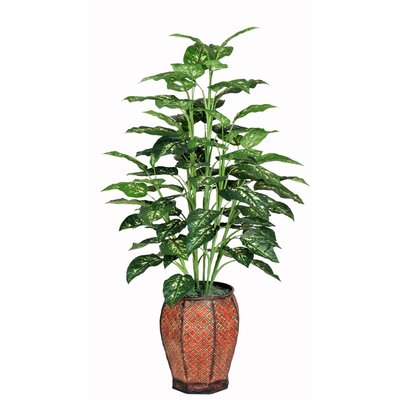 Artificial Marble Dieffenbachia Floor Plant in Planter House of Silk Flowers Inc.