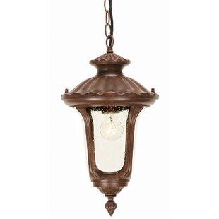 Ventnor 1 Light Outdoor Hanging Lantern Image