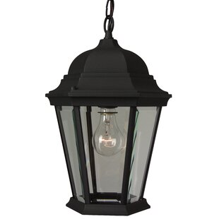 Buy clear Oakhill Outdoor Pendant By Charlton Home