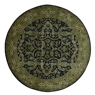 Affordable One-of-a-Kind Bagwell 300 Kpsi New Zealand Hand-Knotted Black/Olive Green Area Rug By Isabelline