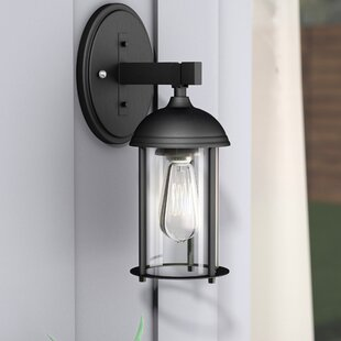 Inexpensive Marshall 1-Light Outdoor Wall Lantern By Trent Austin Design