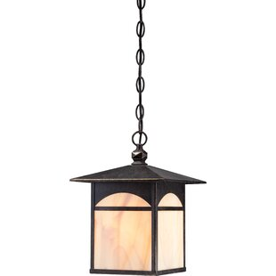 Best Reviews Dissinger 1-Light Outdoor Hanging Lantern By Loon Peak