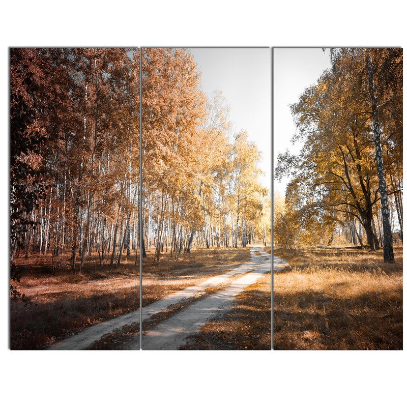 Designart Straight Road In Fall Birch Grove 3 Piece Photographic Print On Wrapped Canvas Set Wayfair