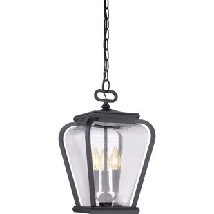 James 3-Light Outdoor Hanging Lantern