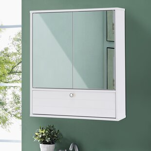 Best Reviews Embree Storage 5.5 W x 21.5 H Wall Mounted Cabinet By Orren Ellis