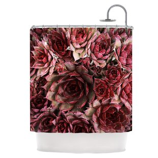 Red Succulents Single Shower Curtain