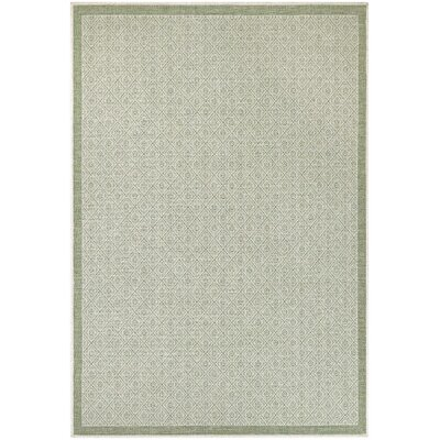 Transitional 8 X 10 Green Rugs For Your Signature Style