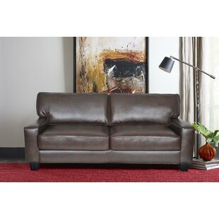 Palisades Sofa by Serta at Home Wonderful