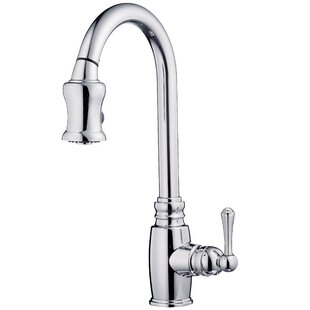 Danze® Opulence Single Handle Kitchen Faucet with Side Spray