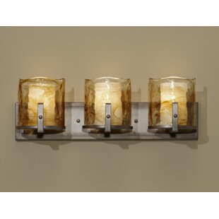 Orren Ellis Crane 3-Light Vanity Light