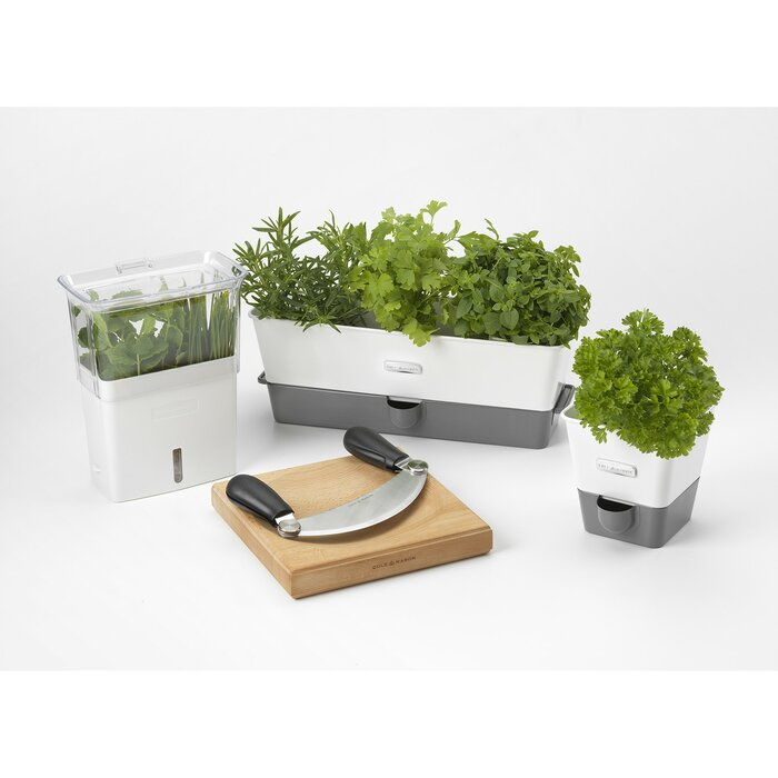 planters max apartment w you planter eat edible herb what grow therapy indoor fit gardens