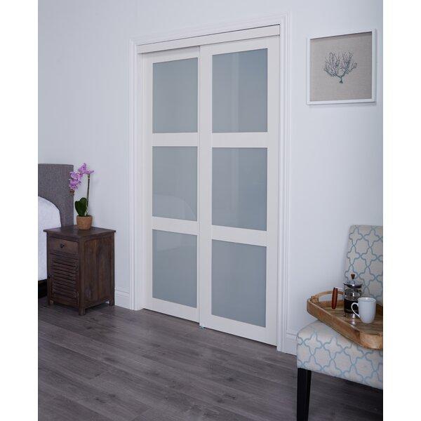 Erias Home Designs Baldarassario MDF 2 Panel Painted Sliding Interior Door  U0026 Reviews | Wayfair