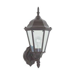 Alcott Hill Raritan 1-Light Outdoor Sconce