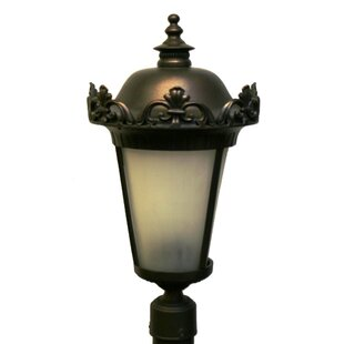 Petrey 3-Light Lantern Head by Alcott Hill