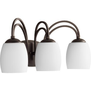 Order Mcguire 3-Light Vanity Light By World Menagerie